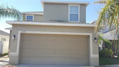 Ruskin Single Family Home For Sale: 1035 Seminole Sky Drive