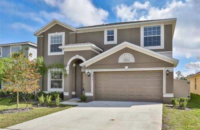 Wimauma Single Family Home For Sale: 16541 Myrtle Sand Drive