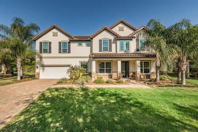 Tampa Single Family Home For Sale: 1803 Bella Casa Court