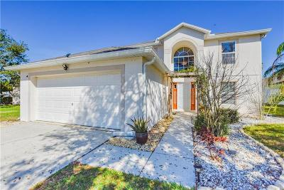 Wesley Chapel Single Family Home For Sale: 31747 Loch Aline Drive