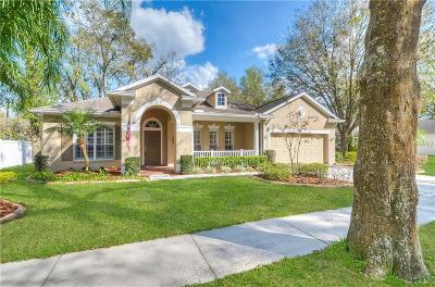 Valrico Single Family Home For Sale: 1605 Hidden Meadow Court