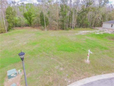 Land O Lakes Residential Lots & Land For Sale: 4018 Cove Lake Place