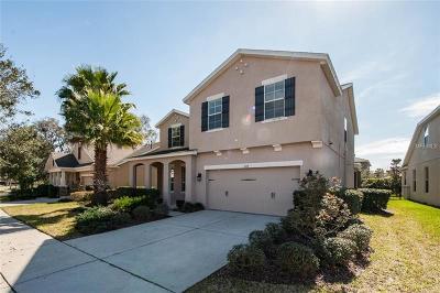 Lithia Single Family Home For Sale: 5114 Sanderling Ridge Drive