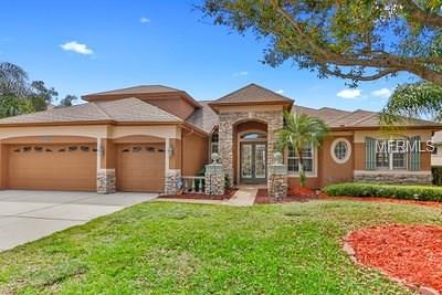 Hernando County, Hillsborough County, Pasco County, Pinellas County Single Family Home For Sale: 16831 Ivy Lake Drive