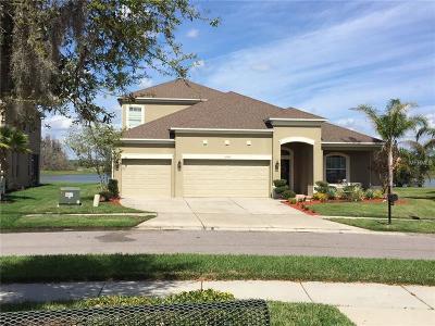 Wesley Chapel Single Family Home For Sale: 27968 Wild Sienna Loop