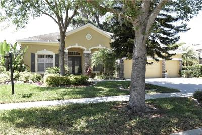 Valrico Single Family Home For Sale: 1418 Brilliant Cut Way