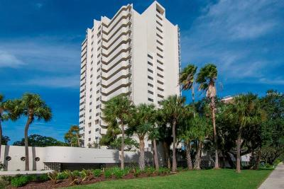 Tampa Condo For Sale: 4141 Bayshore Boulevard #204