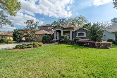 Hillsborough County Single Family Home For Sale: 118 Falling Water Drive