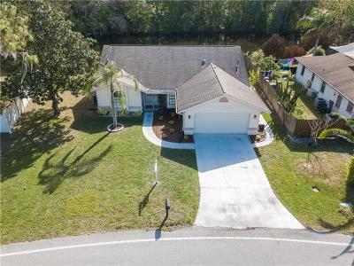 Land O Lakes Single Family Home For Sale: 4206 Parkway Boulevard