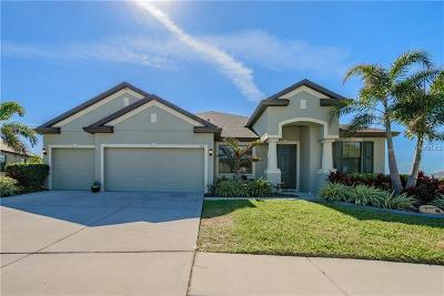 Apollo Beach Single Family Home For Sale: 358 Hope Bay Loop