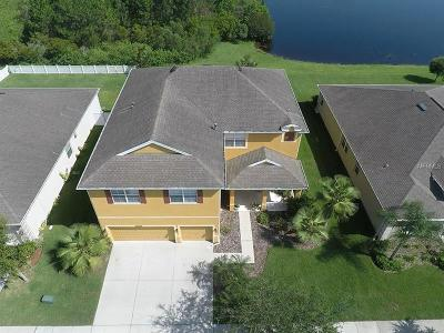 Tampa Single Family Home For Sale: 20055 Oakflower Avenue