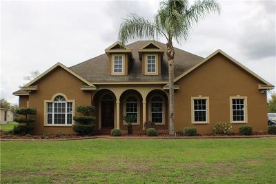Plant City Single Family Home For Sale: 3515 Austin Trail Lane