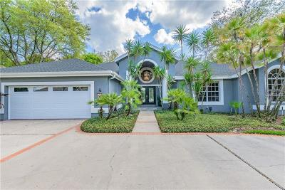 Tampa Single Family Home For Sale: 6523 Stonington Drive S