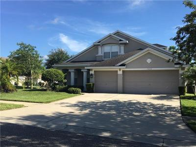 Valrico Single Family Home For Sale: 1502 Main Street