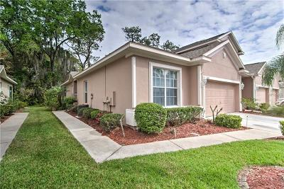 Hernando County, Hillsborough County, Pasco County, Pinellas County Villa For Sale: 1331 Big Pine Drive
