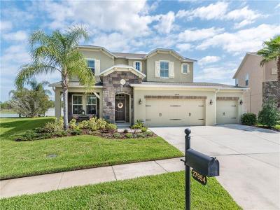 Wesley Chapel Single Family Home For Sale: 27954 Wild Sienna Loop