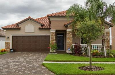 Riverview Single Family Home For Sale: 13141 Green Violet Drive