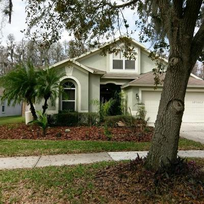 Wesley Chapel Single Family Home For Sale: 1513 Baythorn Drive