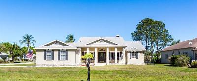 New Port Richey Single Family Home For Sale: 9811 Alvernon Drive