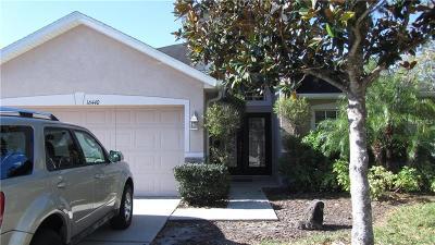 Lithia Single Family Home For Sale: 16440 Bridgewalk Drive