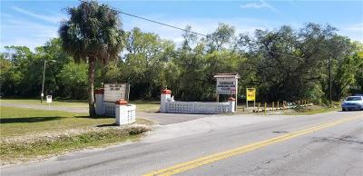 Hillsborough County Residential Lots & Land For Sale: 6111 N Rome Avenue