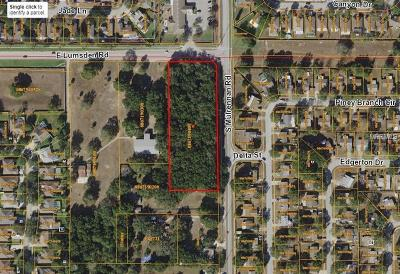 Valrico Residential Lots & Land For Sale: 0 Lumsden Road