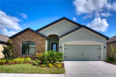 Riverview Single Family Home For Sale: 11908 Winterset Cove Drive