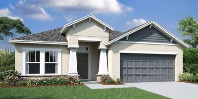 Spring Hill FL Single Family Home For Sale: $203,895