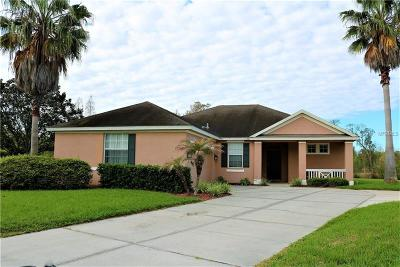 Plant City Single Family Home For Sale: 3335 Steinbeck Place