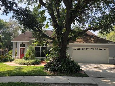 Valrico Single Family Home For Sale: 4119 Moreland Drive
