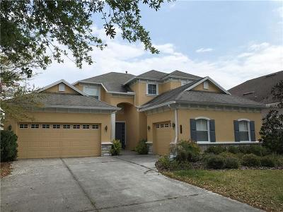 Tampa Single Family Home For Sale: 20425 Walnut Grove Lane