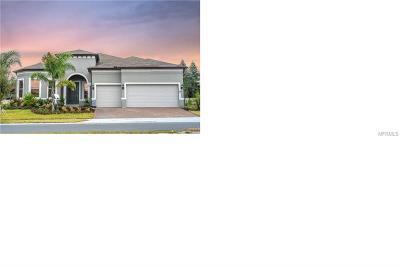 Lake County, Orange County, Osceola County, Seminole County Single Family Home For Sale: 3330 Canyon Grand Pt