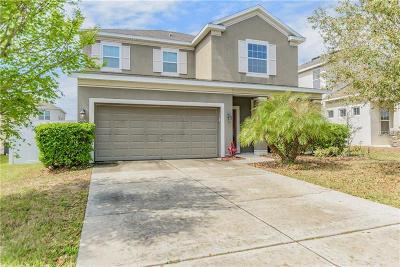 Wesley Chapel Single Family Home For Sale: 7709 Atwood Drive