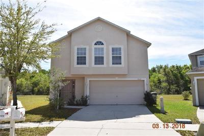 Riverview Single Family Home For Sale: 13631 Silver Charm Court