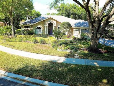 Valrico Single Family Home For Sale: 3907 Cedar Cay Circle