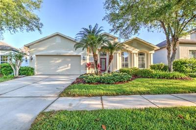 Lithia Single Family Home For Sale: 15533 Martinmeadow Drive