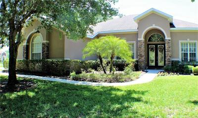 Brandon Single Family Home For Sale: 4206 Winding Vine Court