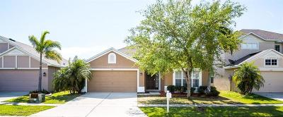 Ruskin Single Family Home For Sale: 505 Stone Briar Drive