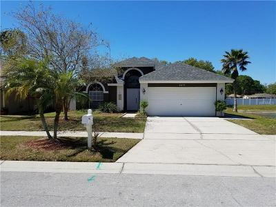 Tampa Single Family Home For Sale: 5611 Paddock Trail Drive