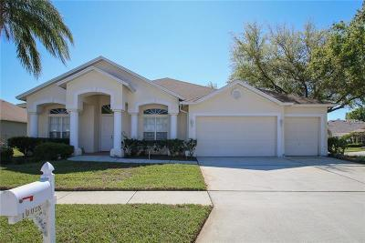 Tampa Single Family Home For Sale: 10028 Oxford Chapel Drive