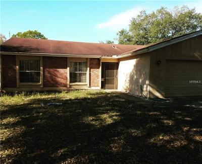 Tampa Single Family Home For Sale: 4906 Crockett Court