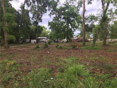 Seffner Residential Lots & Land For Sale: 314 S Parsons Avenue