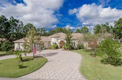 Spring Hill FL Single Family Home For Sale: $589,700