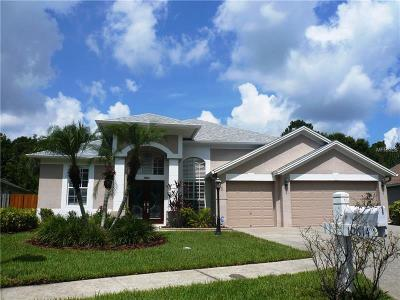 Tampa Single Family Home For Sale: 10614 Chambers Drive