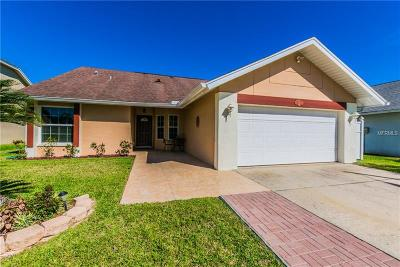 Tampa Single Family Home For Sale: 8619 Boysenberry Drive