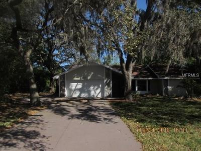 Lakeland Single Family Home For Sale: 1059 Winifred Way