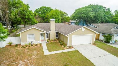 Seffner Single Family Home For Sale: 1825 Craven Drive