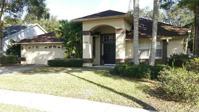 Palm Harbor Single Family Home For Sale: 4005 Eagle Cove Drive W
