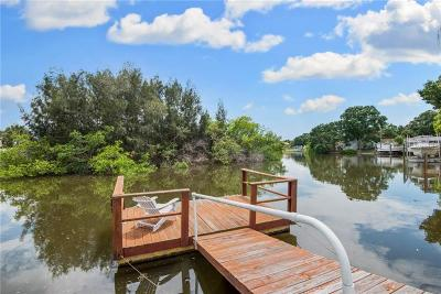 Tampa Single Family Home For Sale: 8702 Driftwood Drive