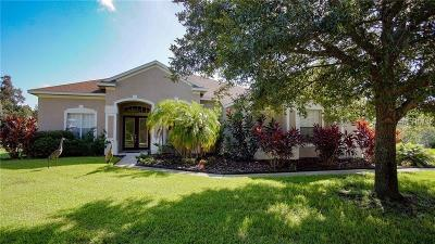 Brandon Single Family Home For Sale: 4209 Winding Vine Court